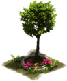 D_SS_ColonialAge_OrnamentalTree.png