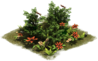 D_SS_EarlyMiddleAge_Hedgewithflowers.png